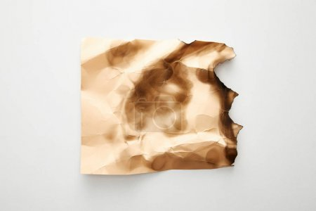 Photo for Top view of empty crumpled and burnt beige vintage paper on white background - Royalty Free Image