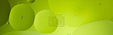 Photo pour Plan panoramique de fond abstrait de bulles d'eau et d'huile mélangées de couleur verte - image libre de droit