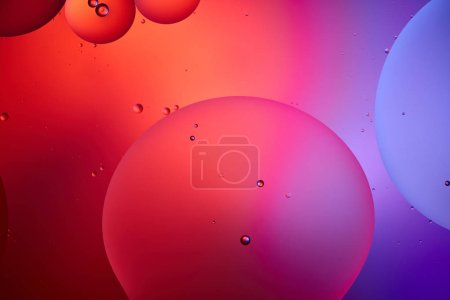 creative abstract background from mixed water and oil bubbles in pink and purple color