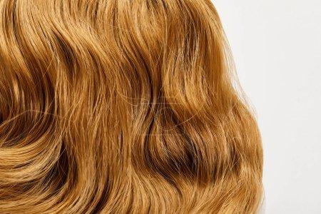 Закрыть вид восковых каштановых волос изолированных на белом