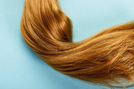 Top view of brown hair on blue background