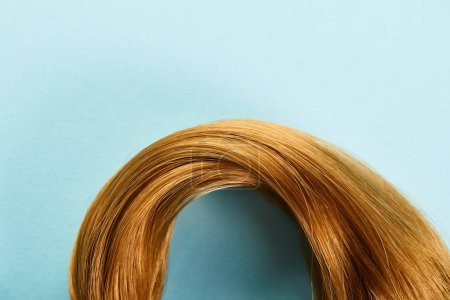 Top view of brown hair on blue background with copy space