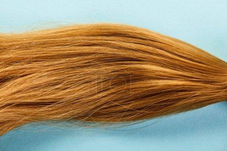 Вид сверху на каштановые волосы на синем фоне