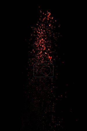 rojo colorido holi pintura explosión sobre fondo negro