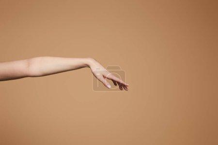 Photo pour Vue recadrée de la main délicate femelle isolée sur beige - image libre de droit