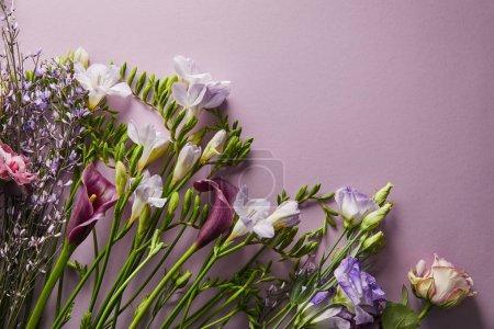 Foto de Vista superior de hermosas flores en fondo violeta con espacio de copia. - Imagen libre de derechos