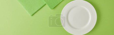 Photo for Panoramic shot of plate and rags for dish washing on green - Royalty Free Image