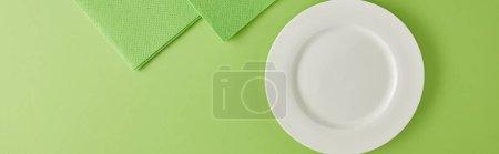 Photo pour Vue panoramique de l'assiette et des chiffons pour laver la vaisselle en vert - image libre de droit
