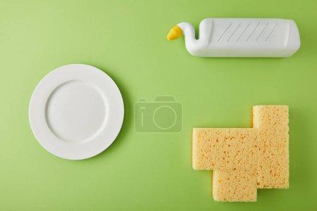 Photo pour Vue du dessus de la plaque, des éponges et de la bouteille pour le lavage des plats sur vert - image libre de droit