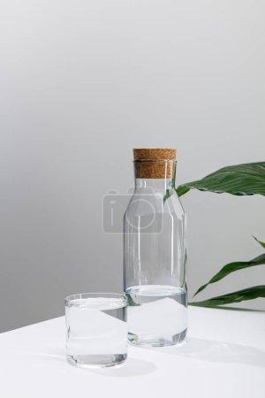 Photo pour Verre et bouteille d'eau douce sur une surface blanche près d'une plante de lis vert - image libre de droit