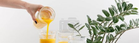 Photo for Cropped view of woman pouring delicious yellow smoothie in glass near green plant isolated on white, panoramic shot - Royalty Free Image