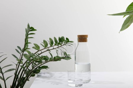 Photo for Glass and bottle of fresh water near green plants on white surface isolated on grey - Royalty Free Image