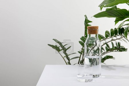 glass and bottle of fresh water near green plants on white surface isolated on grey