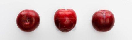 Draufsicht auf Äpfel isoliert auf Weiß, Panoramaaufnahme