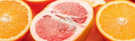 Photo pour Moitiés d'agrumes sur fond orange, plan panoramique - image libre de droit