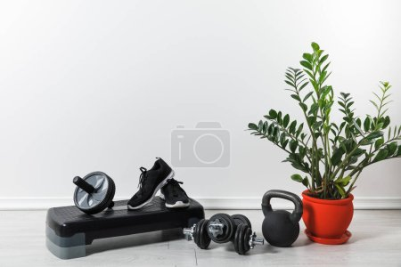 sport equipment and sneakers at home with houseplant