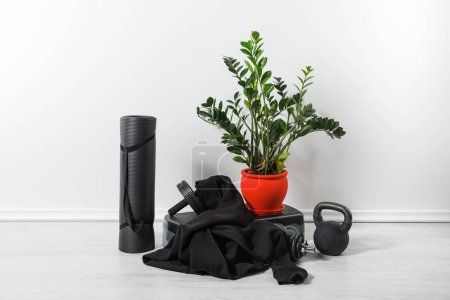 Photo for Sports stuff and sneakers at home with houseplant - Royalty Free Image