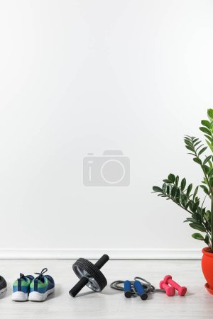 Photo for Dumbbells, abdominal wheel and sneakers at home with houseplant - Royalty Free Image