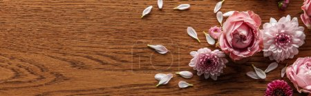 top view of blooming pink spring flowers and petals on wooden background, panoramic shot