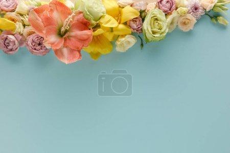 Photo pour Vue de dessus des fleurs de printemps sur fond bleu - image libre de droit