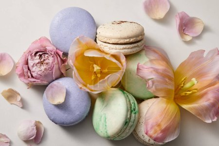 Photo for Top view of assorted delicious french macaroons with floral petals on grey background - Royalty Free Image