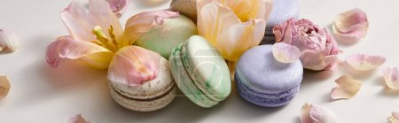 Photo for Assorted delicious french macaroons with floral petals on grey background, panoramic shot - Royalty Free Image