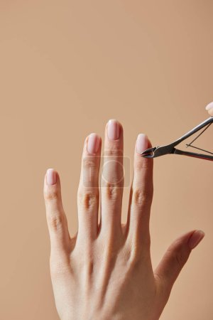 Photo for Partial view of woman doing manicure using cuticle nipper isolated on beige - Royalty Free Image