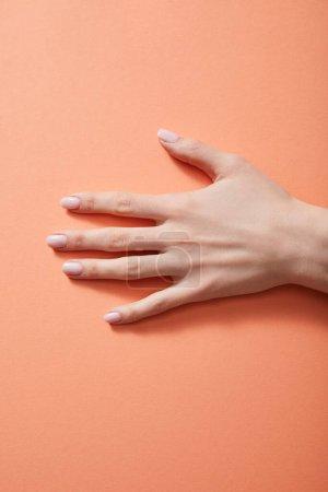 Photo pour Vue agrandie de la main de la femme avec manucure sur le corail - image libre de droit
