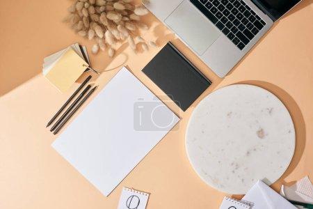 Photo pour Vue du dessus de la feuille de papier, des épillets lagurus, des stylos, du carnet, du panneau de marbre, des échantillons de couleurs et de l'ordinateur portable sur fond beige - image libre de droit