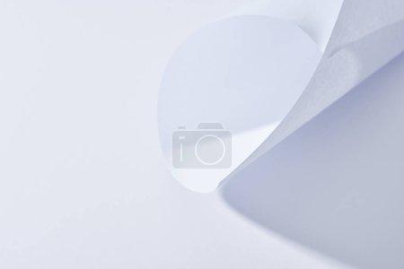 Foto de La vista de cierre de la hoja de papel curvo sobre fondo blanco - Imagen libre de derechos