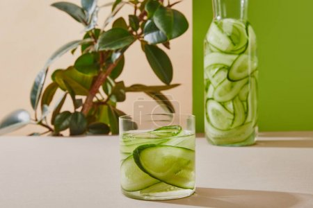 Selective focus of glass and bottle filled with water and sliced cucumbers and plant on beige and green background