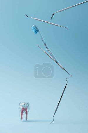 Photo for Dental instruments, toothbrush and artificial plastic tooth on blue background - Royalty Free Image