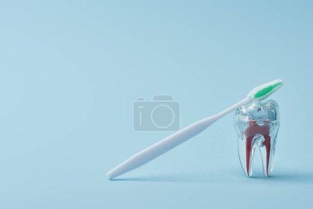 Photo pour Brosse à dents blanche en plastique et dent plastique transparente artificielle sur fond bleu - image libre de droit