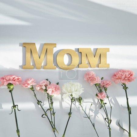 Photo pour Vue du dessus des oeillets roses et blancs et lettrage maman sur fond blanc avec lumière du soleil et ombres - image libre de droit