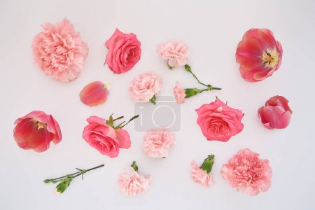 Photo for Top view of pink spring flowers scattered on white background - Royalty Free Image