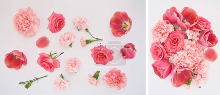 collage of pink spring flowers scattered on white background