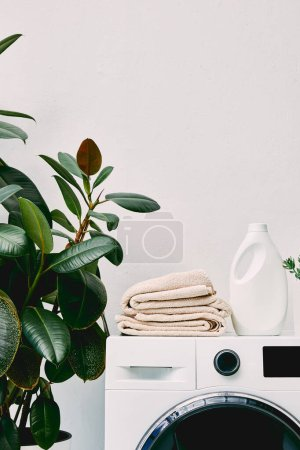 Photo for Green plant near detergent bottle and towels on washing machine in bathroom - Royalty Free Image