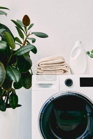 Photo pour Plante avec feuilles vertes près de bouteille de détergent et serviettes sur machine à laver dans la salle de bain - image libre de droit