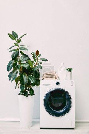 Photo pour Salle de bain moderne avec plantes vertes, bouteille de détergent et serviettes sur machine à laver - image libre de droit