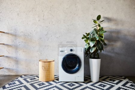 laundry basket near washing machine, green plant and ornamental carpet in modern bathroom