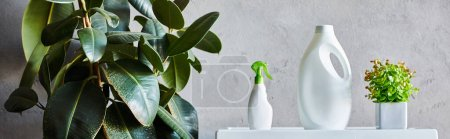 Photo pour Plan panoramique de détergent et de bouteilles de pulvérisation près de plantes vertes dans la salle de bain moderne - image libre de droit
