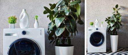 Photo pour Collage de bouteilles de détergent et de pulvérisation sur les machines à laver à proximité des plantes et tapis ornementaux dans la salle de bain moderne - image libre de droit