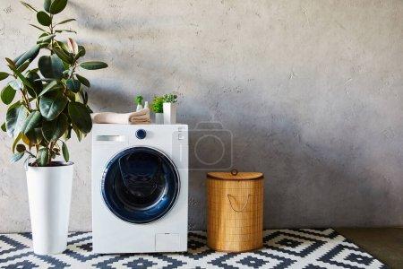 Photo pour Plantes vertes, serviette et bouteilles sur machine à laver blanche près du panier à linge et tapis ornemental dans la salle de bain - image libre de droit