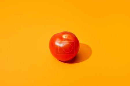 ripe fresh tomato on orange background