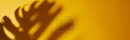 Photo pour Plan panoramique de l'ombre des feuilles tropicales sur fond jaune - image libre de droit