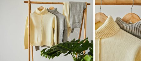 Photo for Collage of beige and grey knitted soft sweaters and pants hanging on wooden hangers near green plant isolated on white - Royalty Free Image