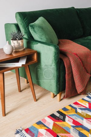 Photo for Green sofa with pillow and blanket near wooden coffee table with plant and colorful rug - Royalty Free Image