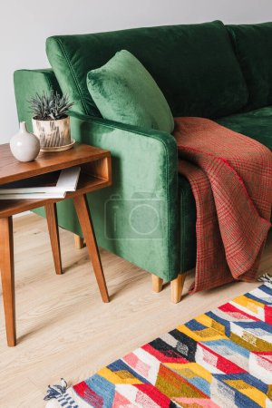 Photo pour Canapé vert avec oreiller et couverture près de la table basse en bois avec plantes et tapis coloré - image libre de droit