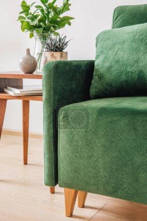 Photo pour Vue de près d'un canapé vert avec oreiller et couverture près d'une table basse en bois avec plantes - image libre de droit