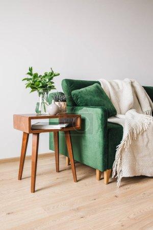 Photo pour Canapé vert avec oreiller et couverture près de la table basse en bois avec des plantes - image libre de droit